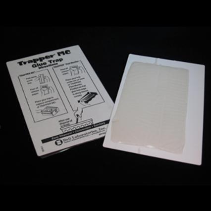 Trapper MT. Glue Board ( 48 In a packet)