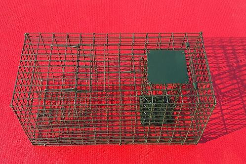 Live-Catch Rat Trap