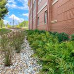 Health Science Sector at Auburn University