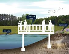 city-lake-park-slides-presentation-13jp