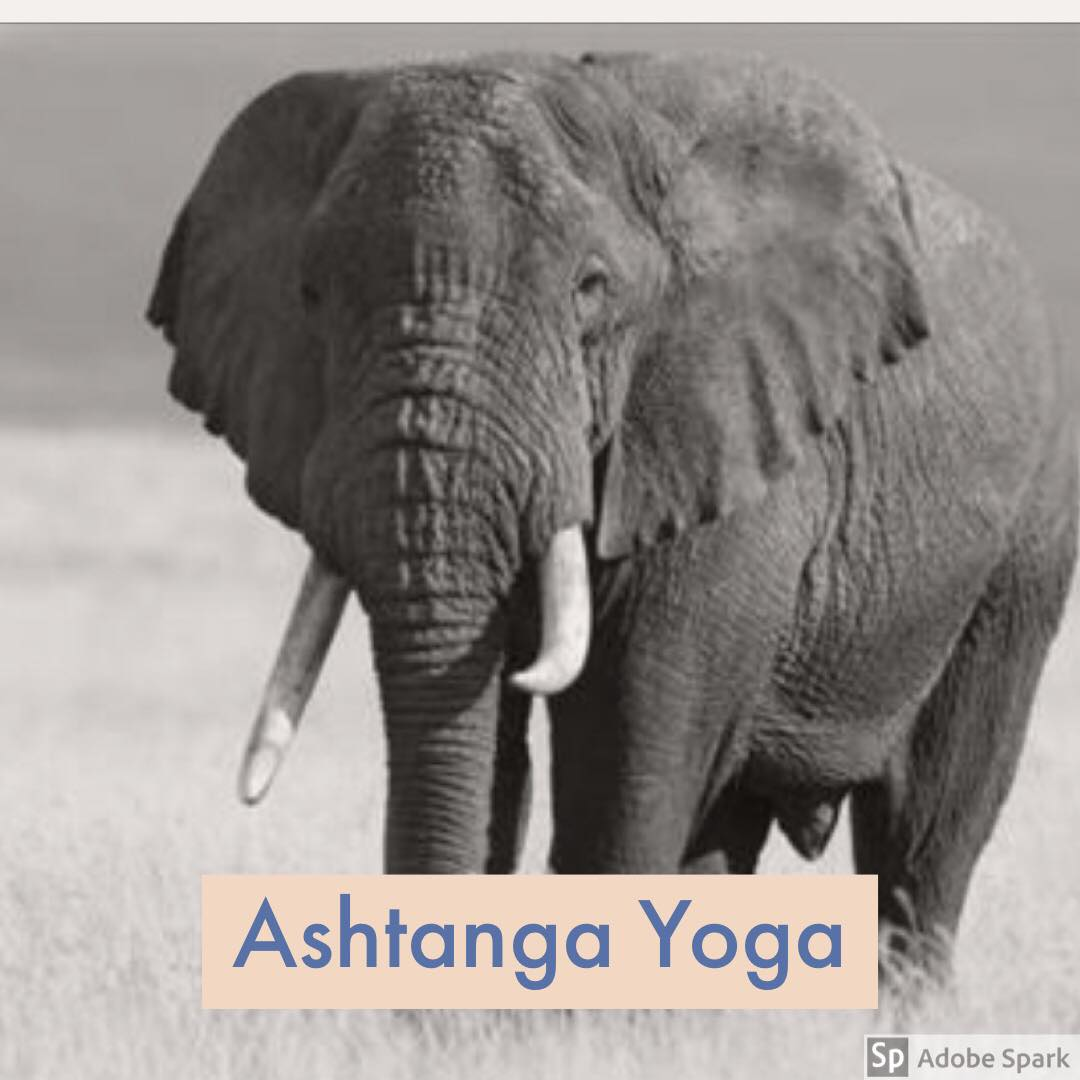 Ashtanga Yoga with Michael Streeter