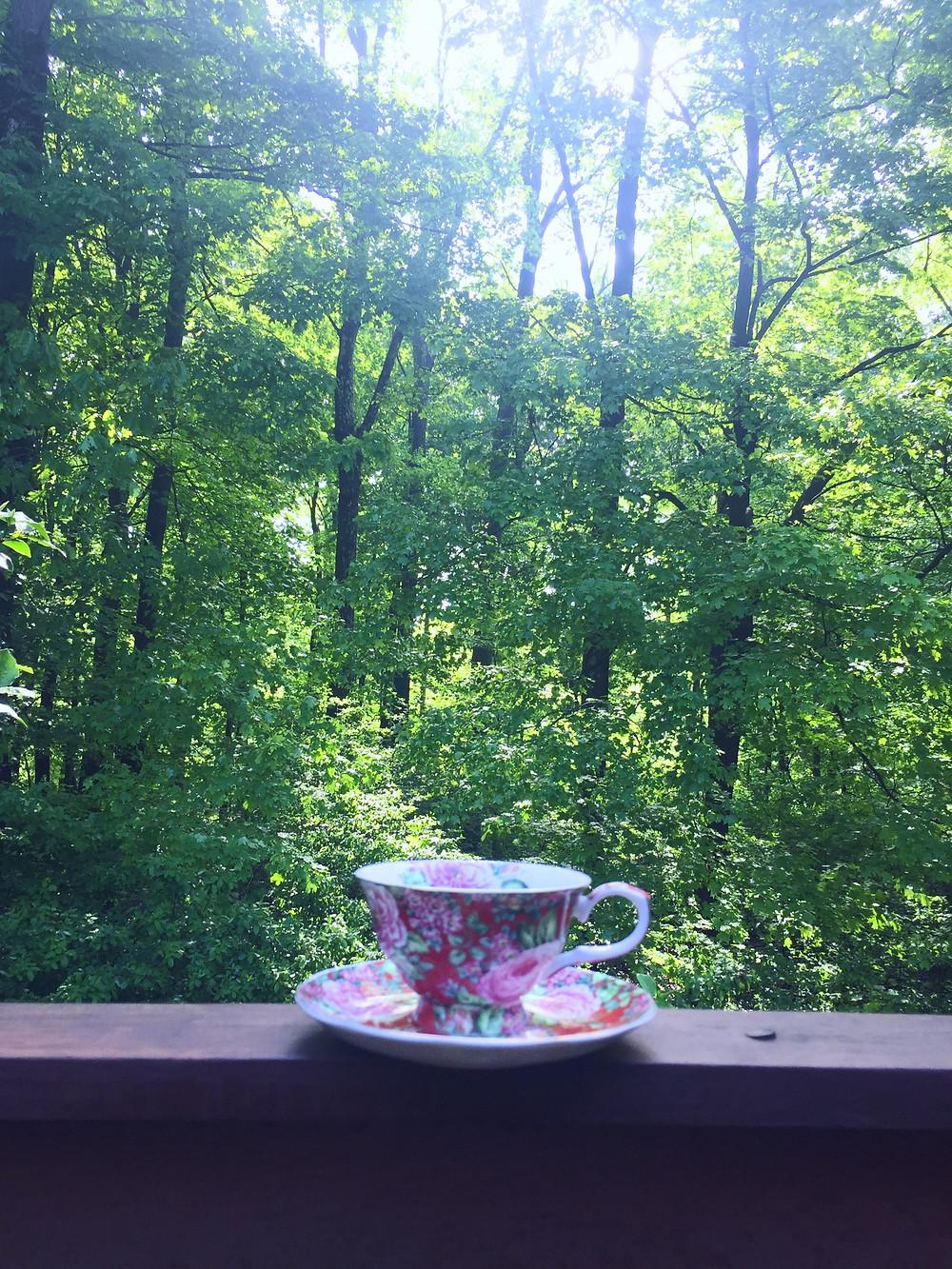 Tea cup and saucer overlooking woods