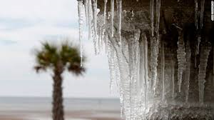 Icicles and a palm tree in the background