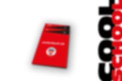 MG®-SSS-Pro-Mini-2010.jpg