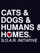 SOAR Logo.jpeg
