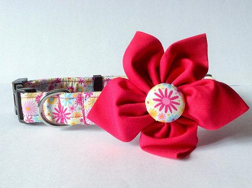 Happy Daisy Flower Collar