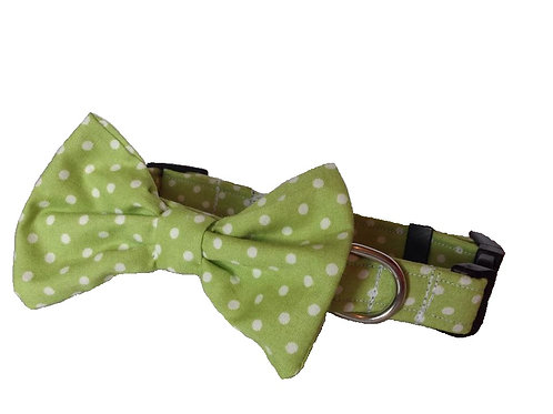 Lime Polkadot Bow Collar