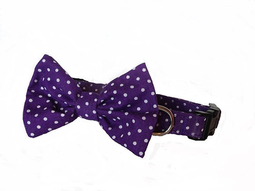 Purple Polkadot Bow Collar