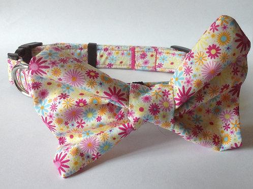 Happy Daisy Bow Collar