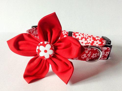 Red Daisy Flower Collar