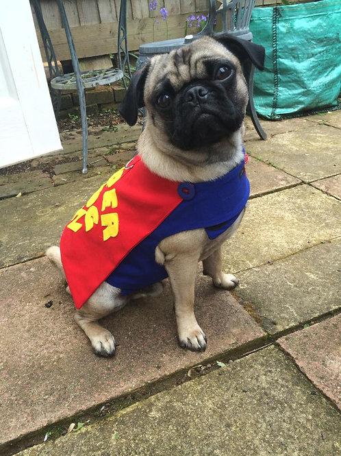 Super Hero Harness