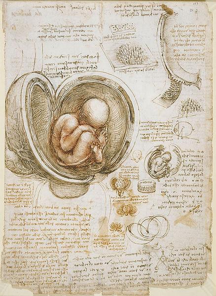 רישום לאונרדו דה וינצי - קודקס.jpg