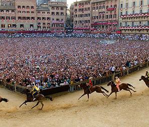 תחרות סוסים סיינה איטליה