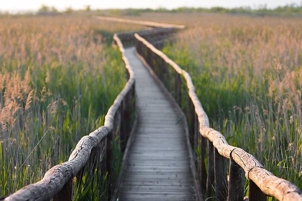 מזח בשמורת הטבע מסאצ'וקולי