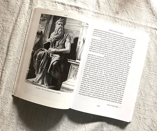 ספר עם פסל משה של מיכאלאנג'לו