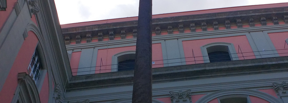 מוזיאון הארכיאולוגיה נאפולי