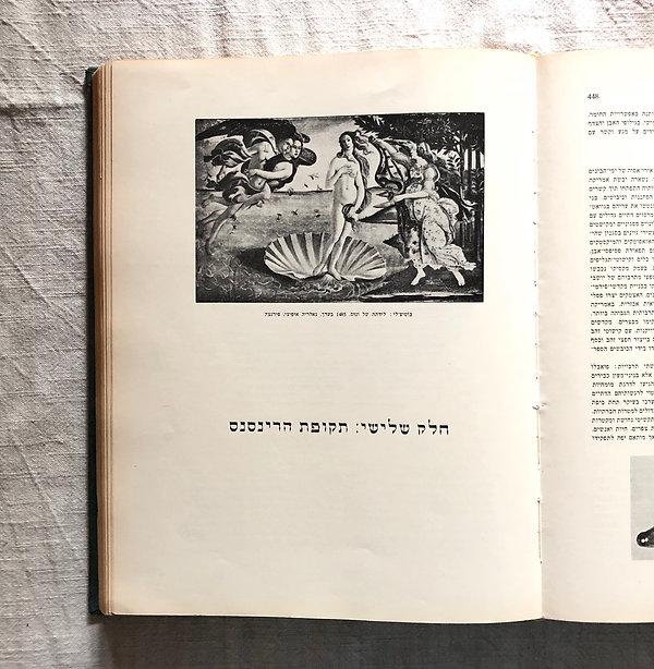 ספר על תקופת הרנסאנס