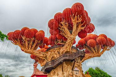 עץ פרצמולו פארק גארדאלנד איטליה