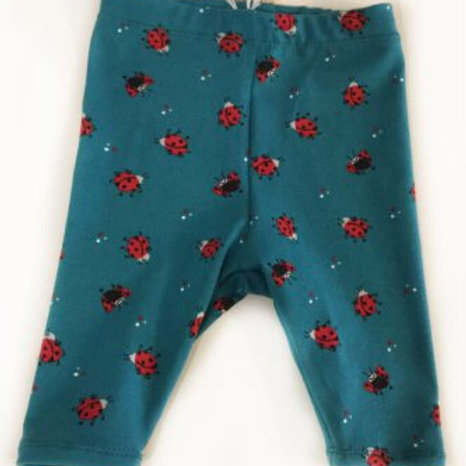 Tricot legging, lieveheersbeestjes