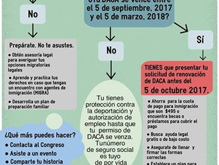 What to do if I have DACA?