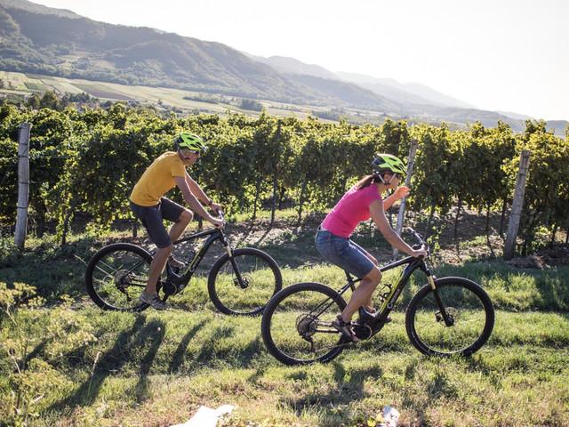 Kerékpár túrák