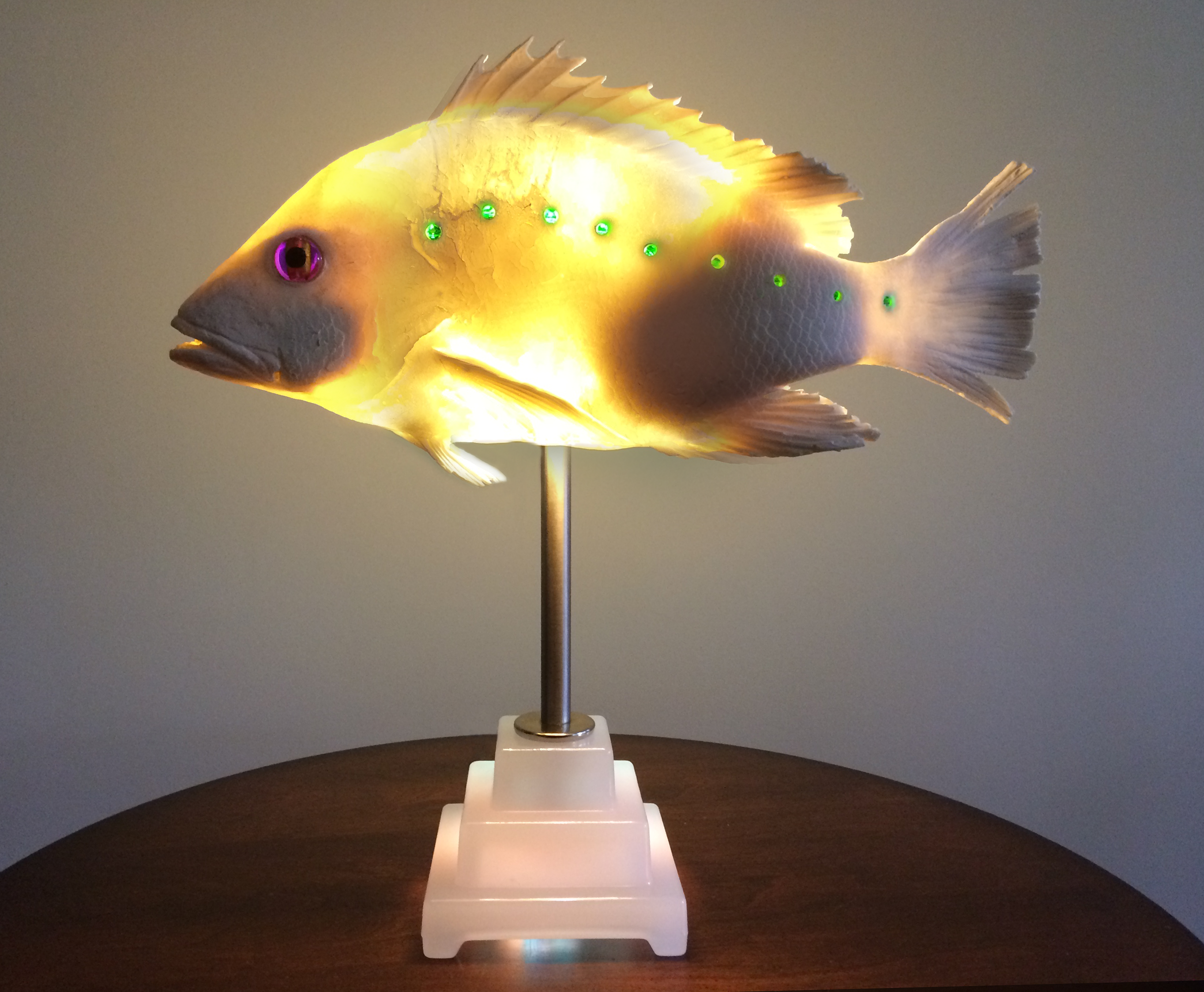 Fish Light