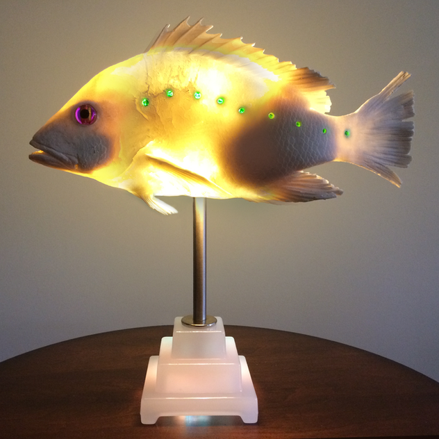 Fish Light.png