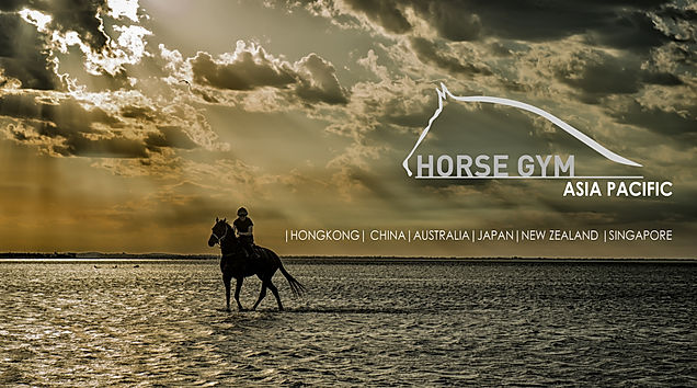 Horse Gym Asia provides quality equine treadmills. Equestrian, horse racing, dressage, training, rehabilitation