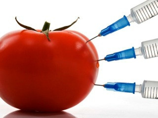 SAFE vs. DARK: The GMO Debate