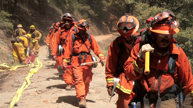 Inmate Hand Crews Fight California's Forest Fires