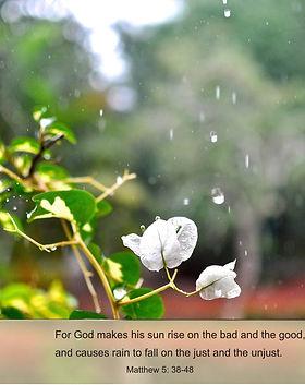Sun-and-Rain.jpg
