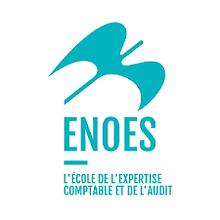 Logo Enoes.png