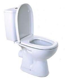 toilet img.JPG