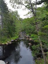 Beaverbank.jpg
