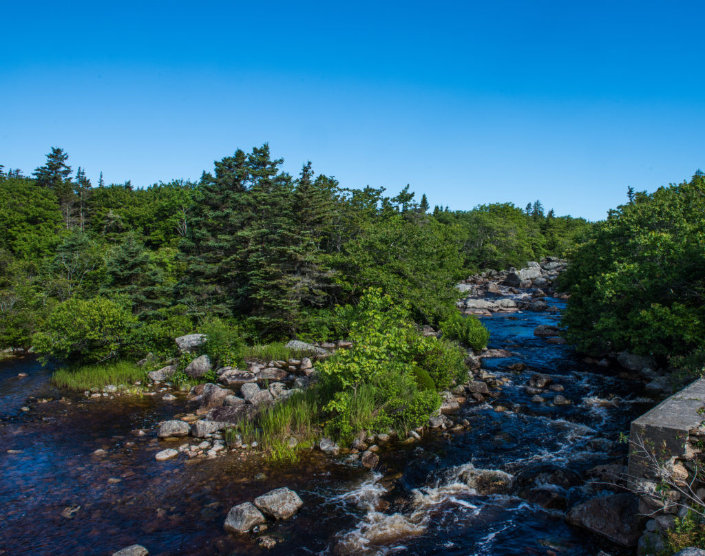 Pennant-River-Photography-By-Scott-Munn-