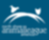nsal-footer-logo-21-2a (1).png