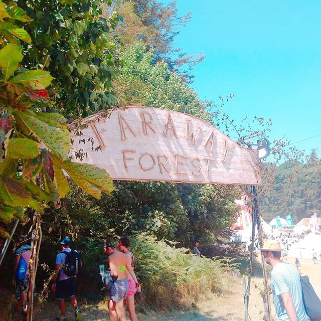 I loved all the different signs are _latitudefest_Their art team is amazing!!_._._