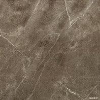 Pietre Pulpis Lucido 481 x 481mm