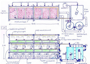 Aquaponics Design Linda Grotenbreg.jpg