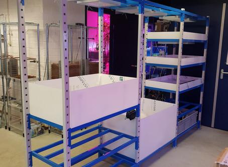 Aquaponicssystem build in Deventer