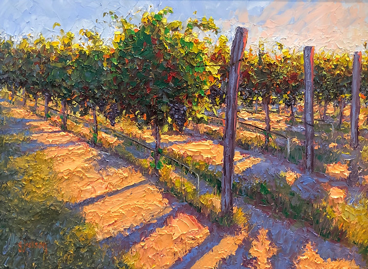 Hill Country Vineyard