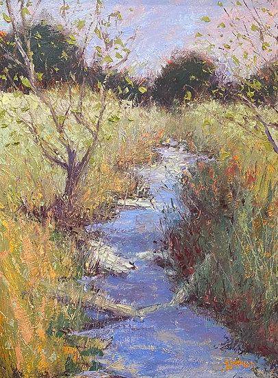 Joshua Springs Creek