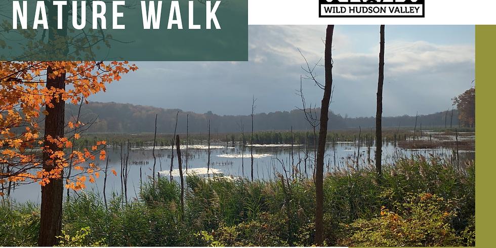 Indigenous Summer Nature Walk