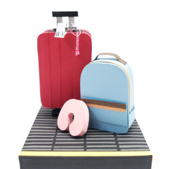 Luggage Series: Airport