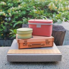 Luggage Series: Train Ride