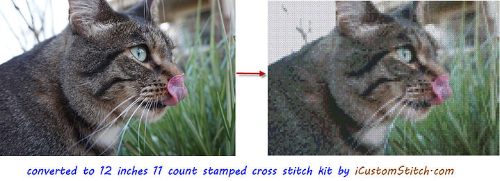 Cat converted to Cross Stitch.JPG
