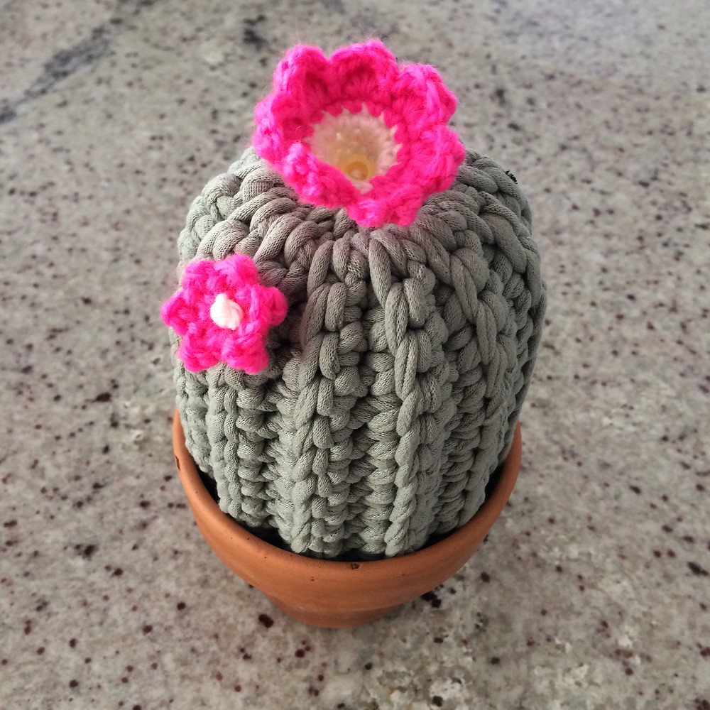 crochet cactus hot pink flowers from t-shirt yarn