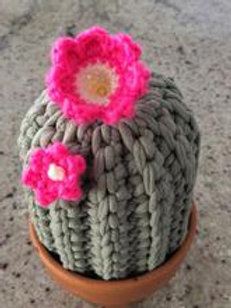 Crochet Cactus Flowers