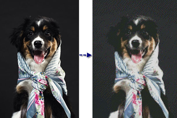 Dog converted to Cross Stitch.jpg