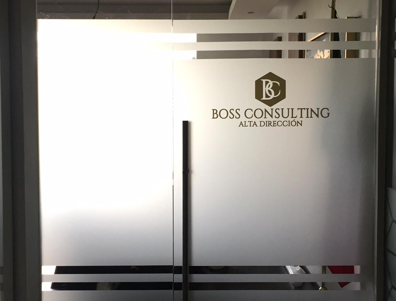 Vinil esmerilado puerta imagen corporativa puebla.JPG